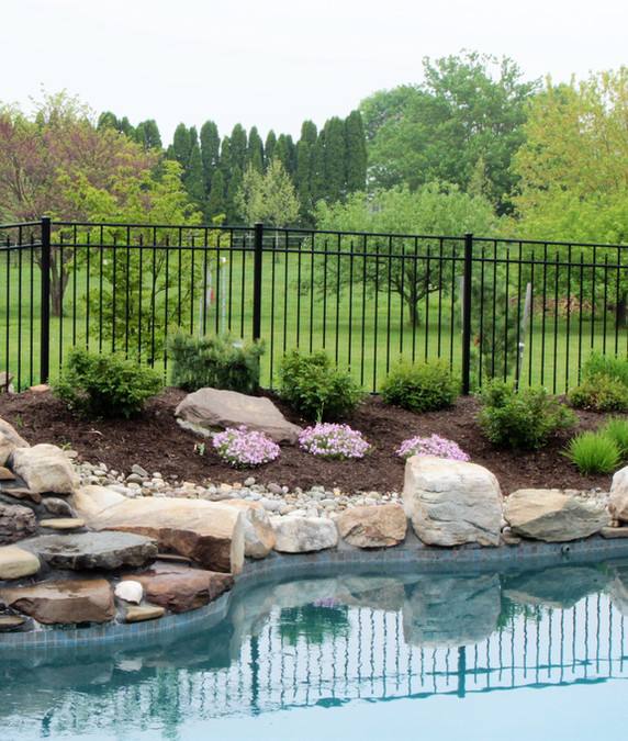 Pool side naive planting - Ruth Consoli Design