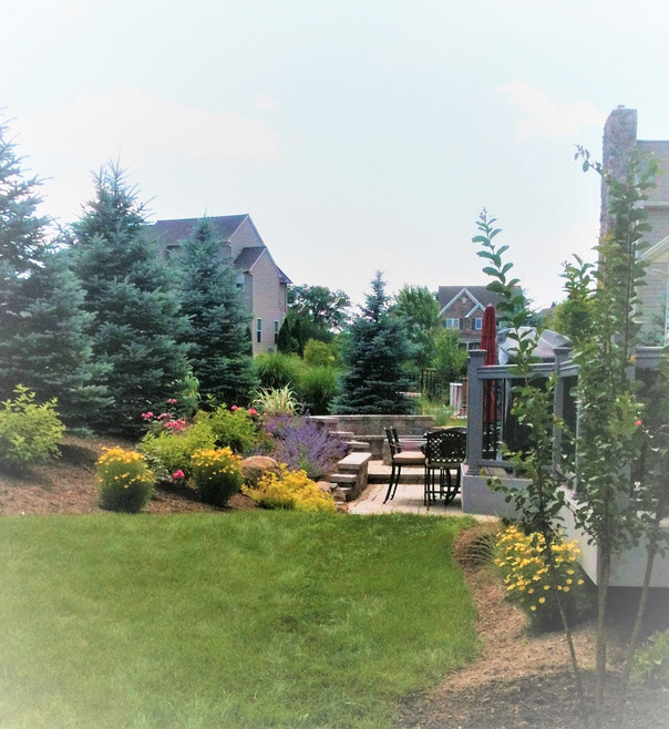 Colorful backyard retreat