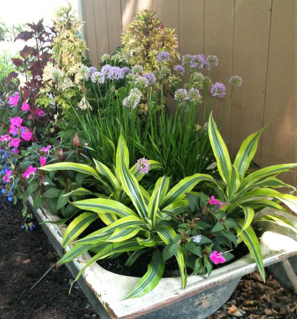 Outdoor whimsical bathtub planter