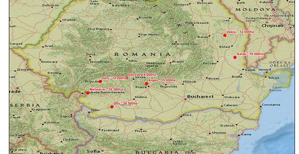 Harta României cu locațiile pădurilor