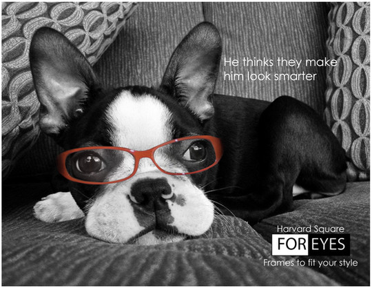 Ad for a local eyeglasses store