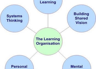 Creating a Learning Organization for Change
