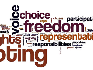 Promoting Accountable Democracies