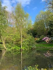 queen st gardens.jpg