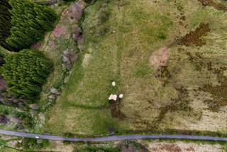 drone-21.jpg