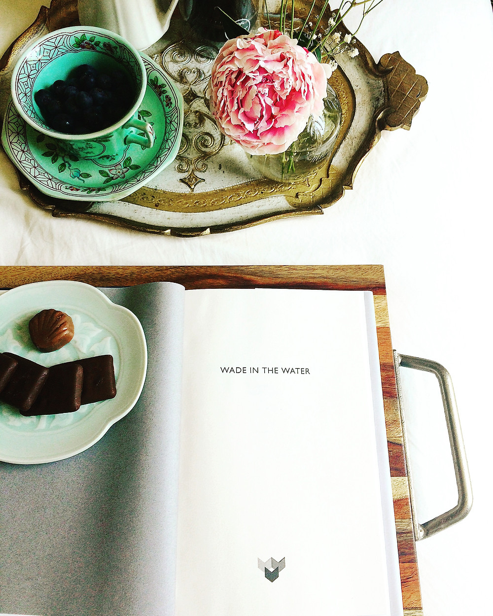Wade in the Water by Tracy K Smith Graywolf Press