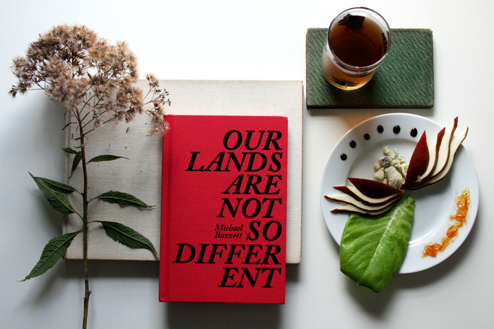 Imaginary Worlds: Our Lands Are Not So Different by Michael Bazzett