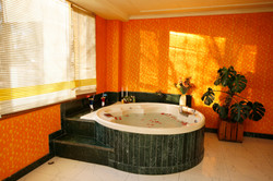hotel willow banks shimla_10090net wix