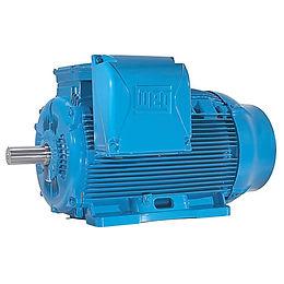 Motores Elétricos WEG