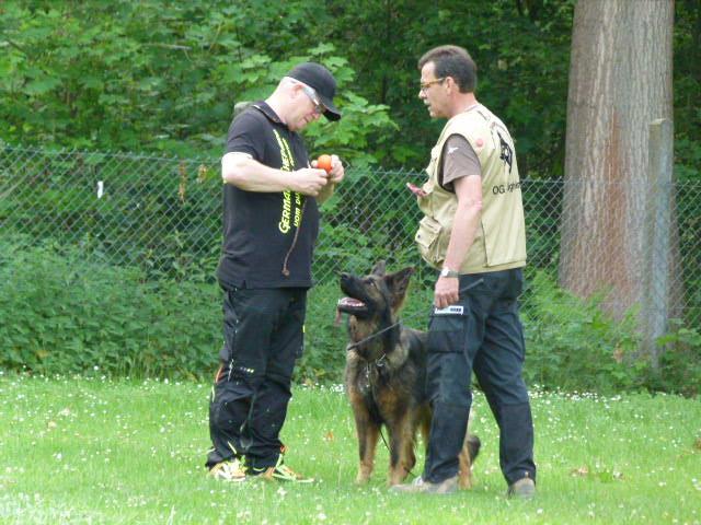 Volker, Robert und Lexa