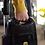 Thumbnail: R25 Premium Pet Upright Vacuum