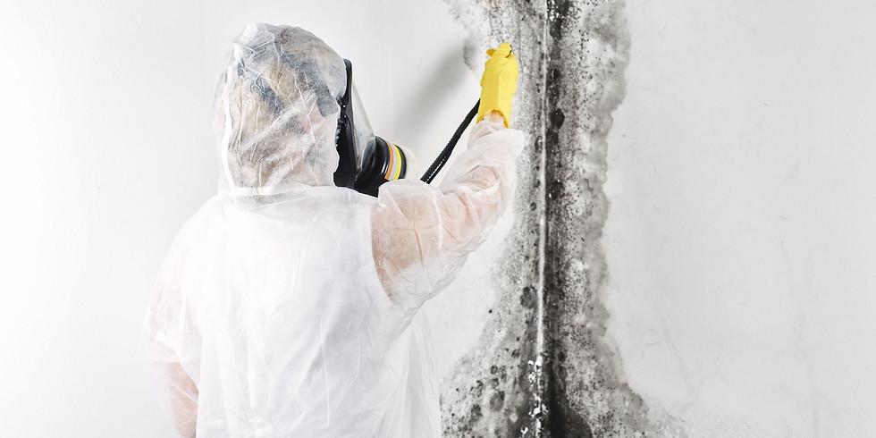 Hygiene bei der Sanierung von Schimmel in Gebäuden