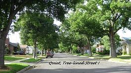 Street Neighborhood.jpg