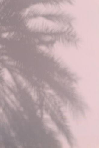 pink_texture.jpg