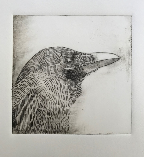 Dry point print Made by Elaine Savoie