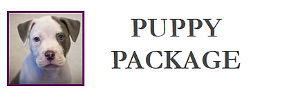pup.png