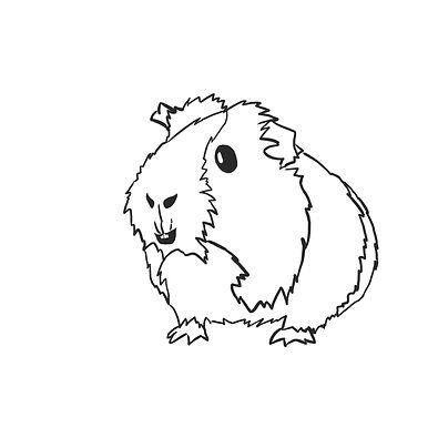 Guinea pig Outline b&w.jpg