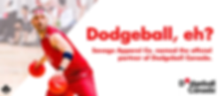 Savage_Marketing_DodgeballCanada_Banner.