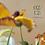 Thumbnail: 02 Wild Blossoms