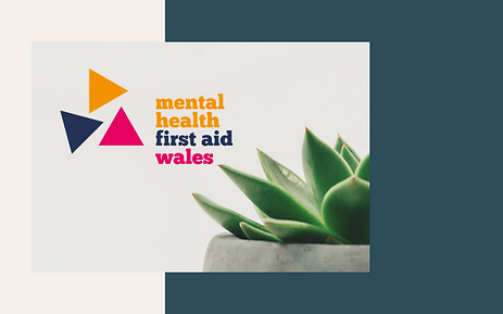 MHFA adult website updated.png