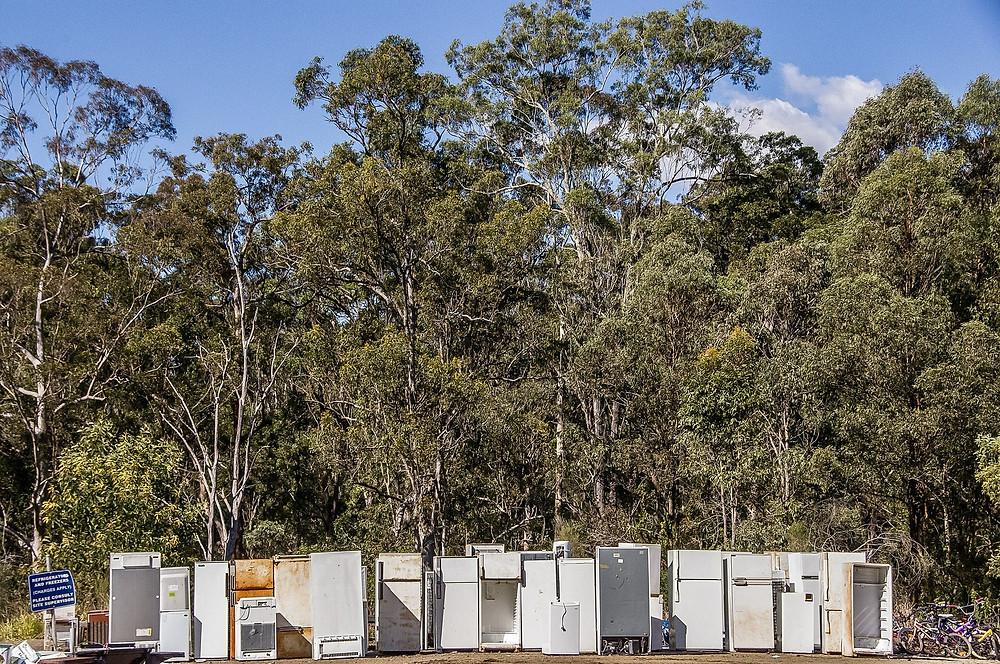 Greenfreeze Kühlschränke sind besser für die Umwelt und den Geldbeutel