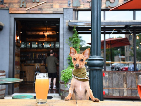 YAPPY HOUR IN MILWAUKEE