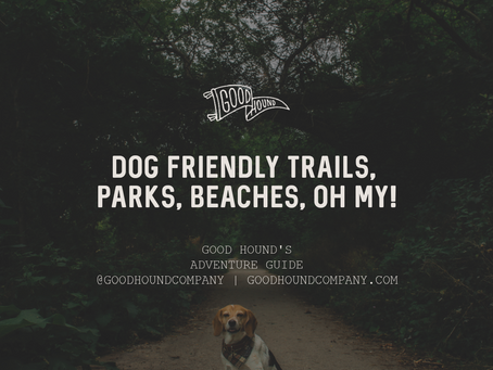 Dog Friendly Trails, Parks, Beaches - Oh My!