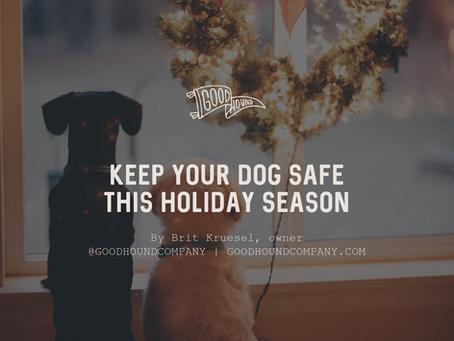 Keep Your Dog Safe This Holiday Season