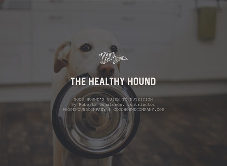 The Healthy Hound - Good Hound's Guide to Nutrition