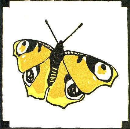 20 x 20 Butterfly