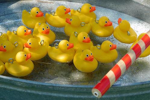 Hook a Duck (Tin Bath)
