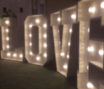 Love Lights5.jpg