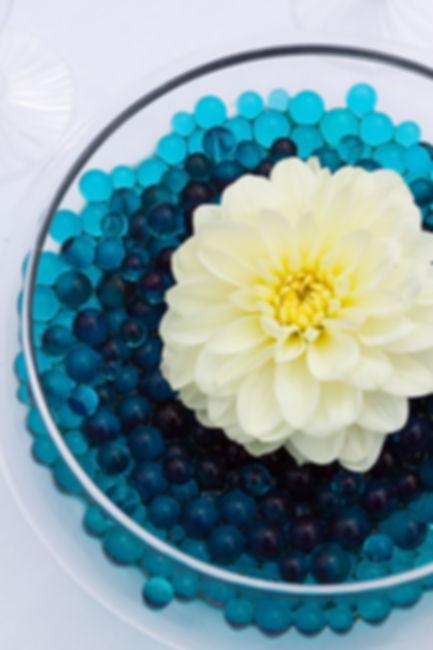 Fish Bowl 1.jpeg
