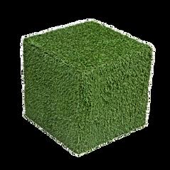 Grass%20Cubes_edited.png