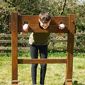 Medieval Stocks in Action