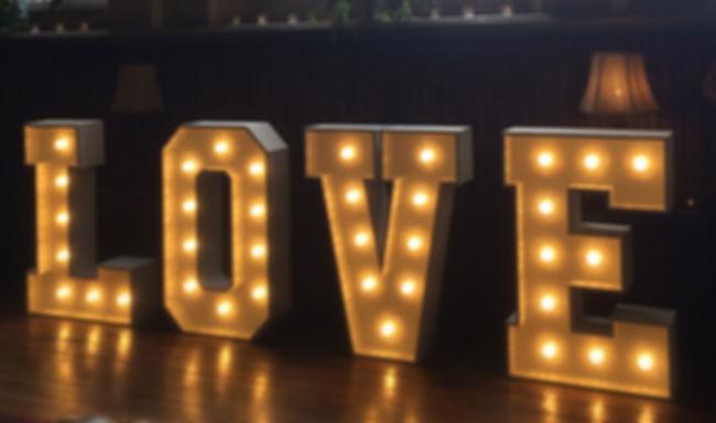 4Ft Illuminated Love Lights