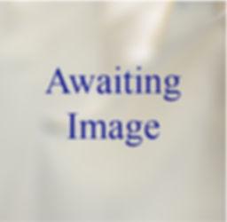 Awaiting Image.jpg