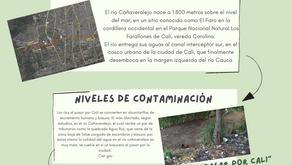 Río Cañaveralejo