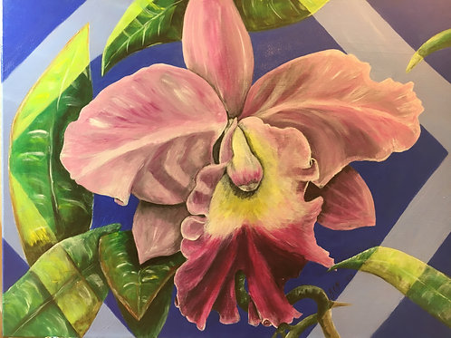 Magenta orchid in the blue