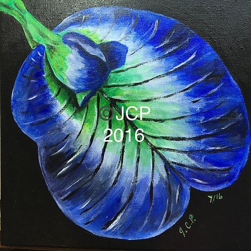 Blue Butterfly Pea Flower