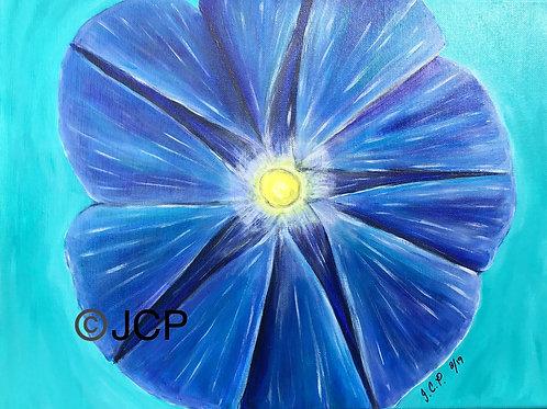 Bright Blue Morning Glory