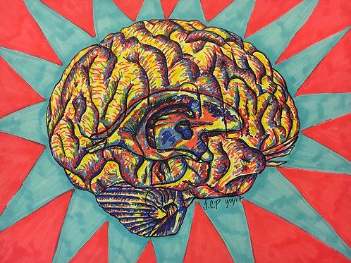 It's a primary brain!