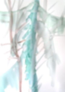 IMG_5160_edited.jpg