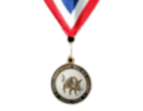 Custom Awards and Medals Sherman, TX