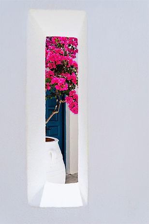 Casa caiada de branco bounganvillea Algarve