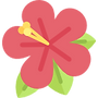002-hibiscus.png