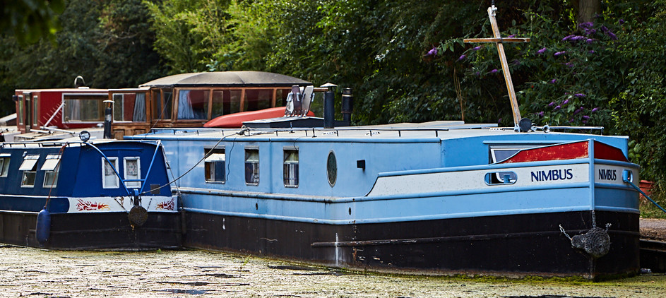 Friends of Slough Canal153 1.jpg