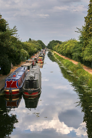 Friends of Slough Canal173.jpg