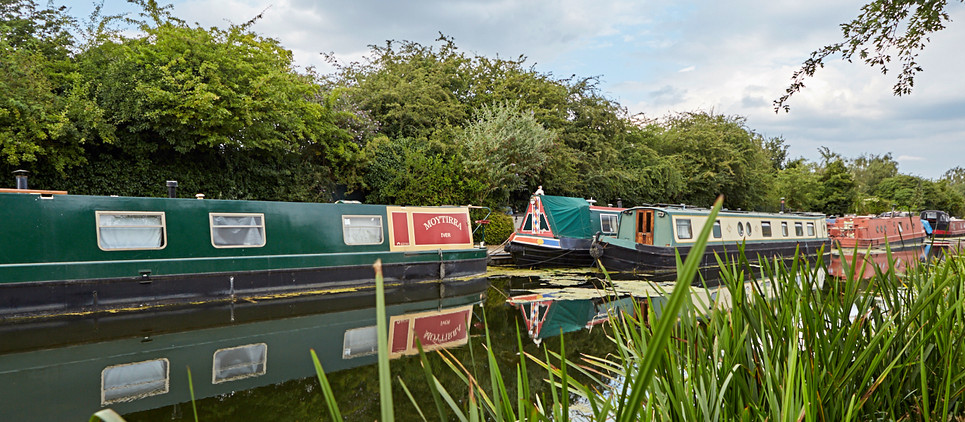 Friends of Slough Canal118 1.jpg