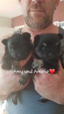 Amy und Amelie